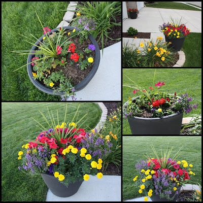 grey planters and flowers