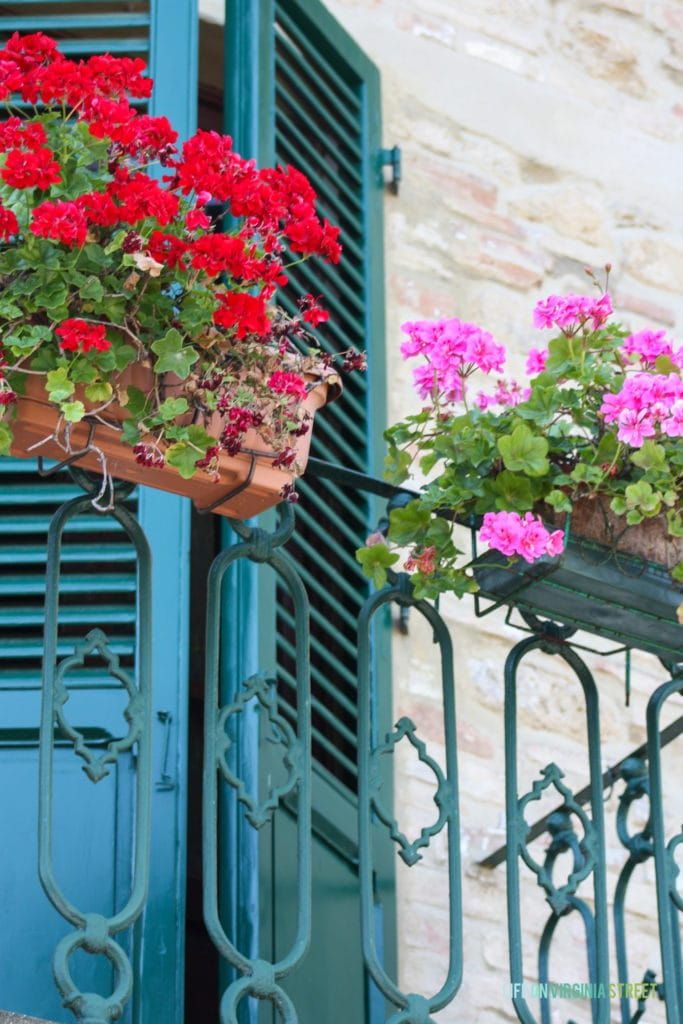 Volterra, Italy. Blue shutters on door with blue iron balcony and colorful geraniums.