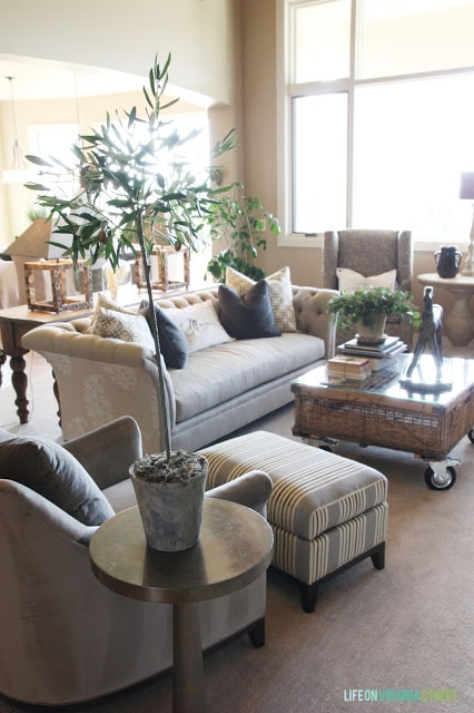 A neutral living room with an olive tree, chesterfield couch and French details.