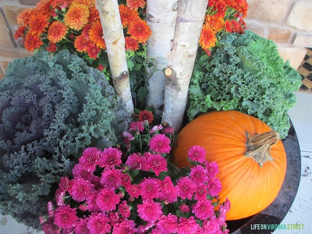 Pumpkin, kale, purple and orange flowers in large planter.
