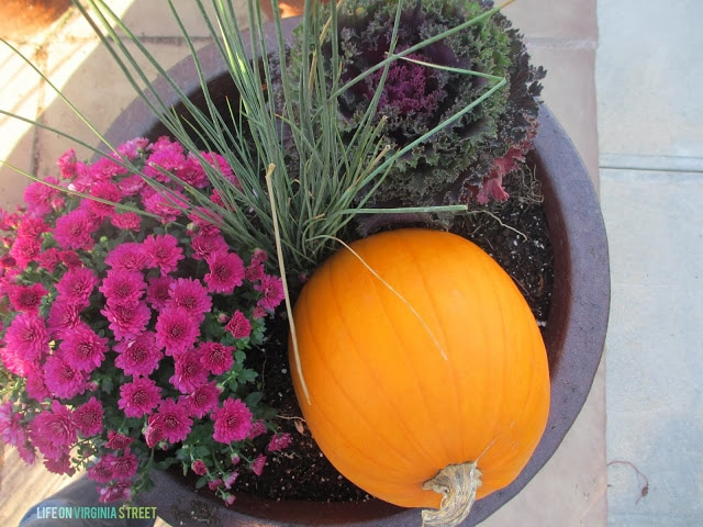 Planter filled with purple flowers, orange pumpkin, and kale.
