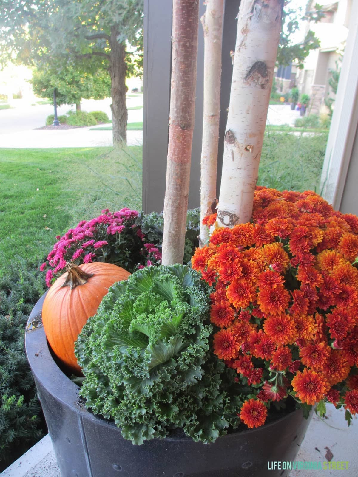 Fall Planters. Landscaping And Outdoor Spaces