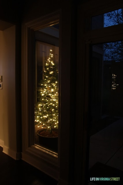 A Christmas tree outside on the porch.