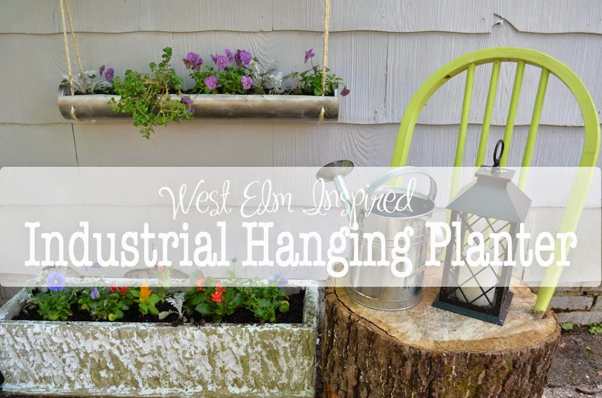 West Elm Industrial Hanging Planter graphic.
