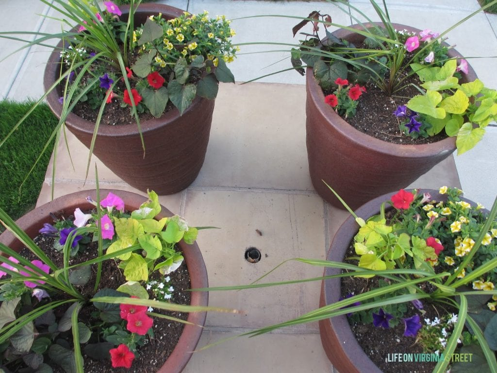 Four flowering planters on the front porch.