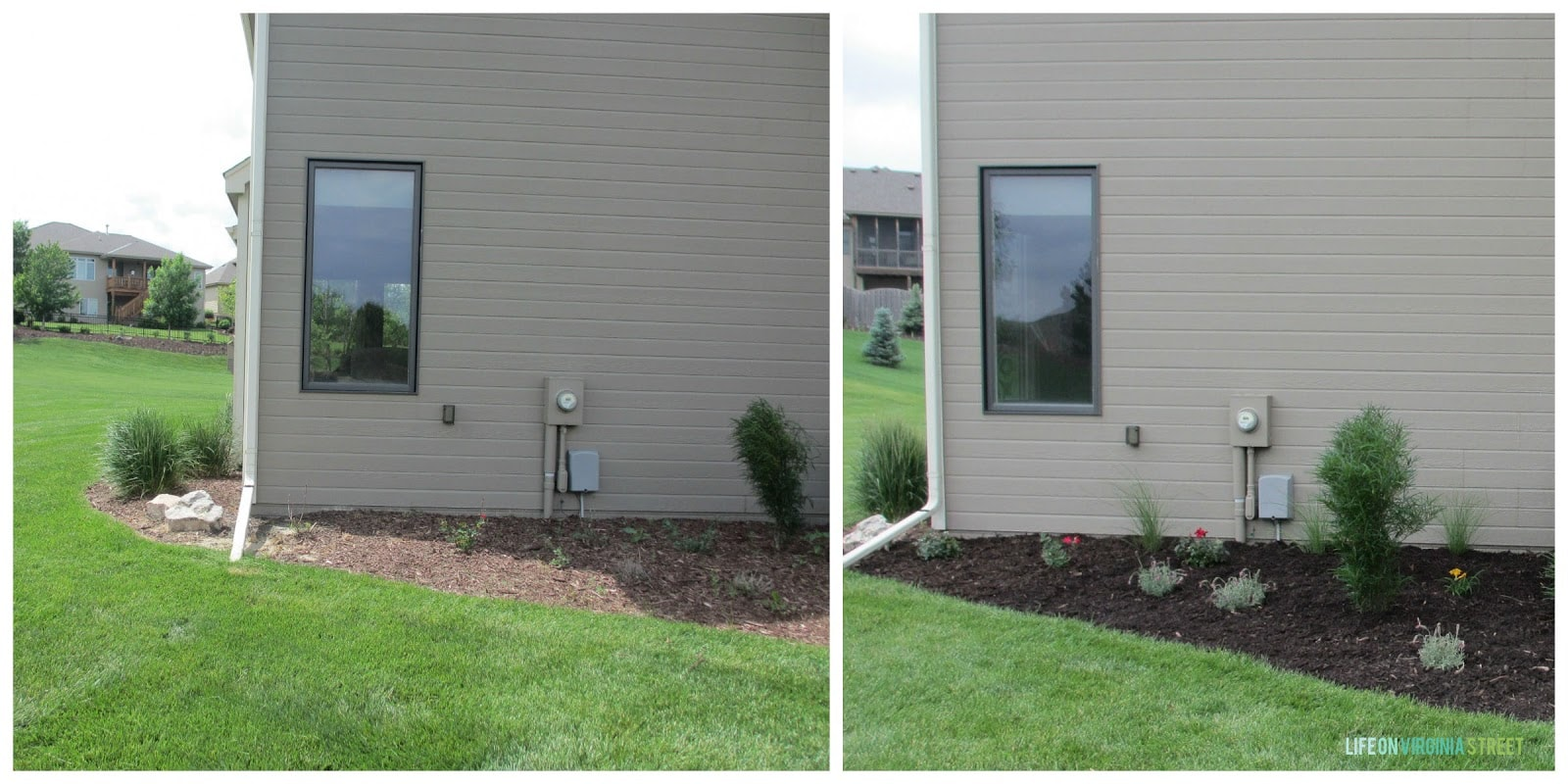 The backside of the house with small flowering bushes being planted.