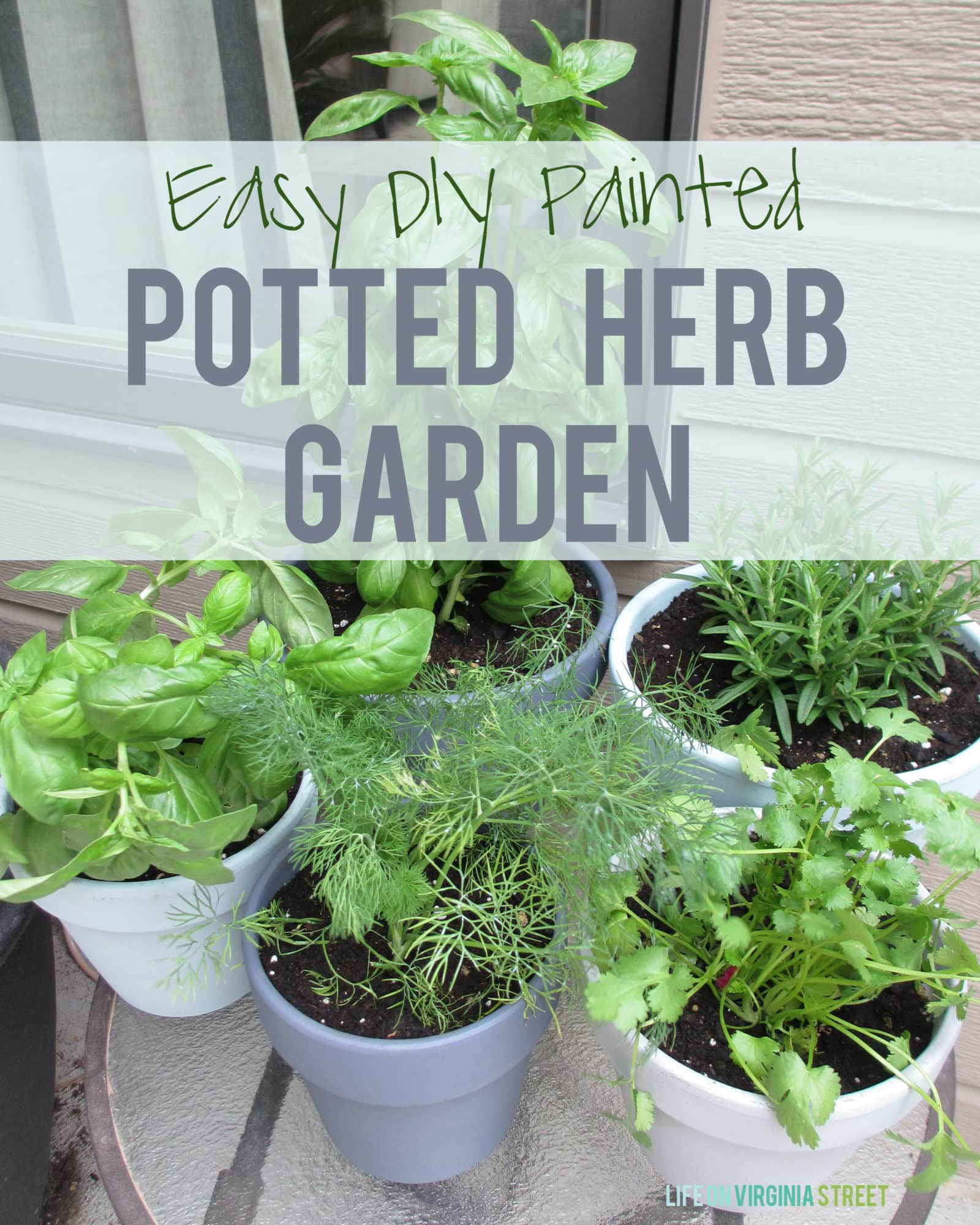 DIY Painted Potted Herb Garden