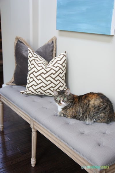 Entryway bench with henley the cat on the bench.
