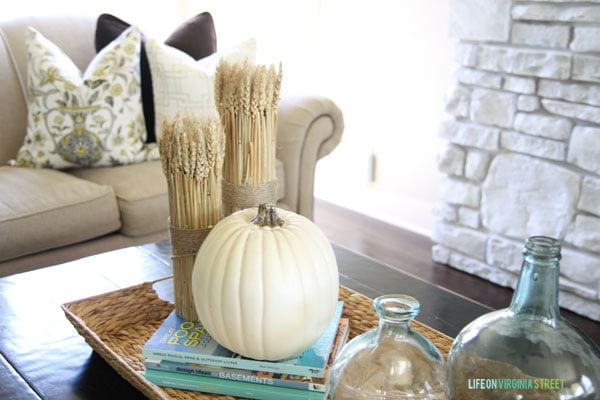 fall pillows and decor