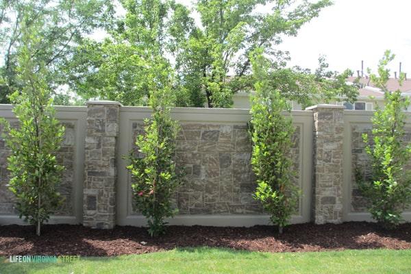 slc home 2 oak trees