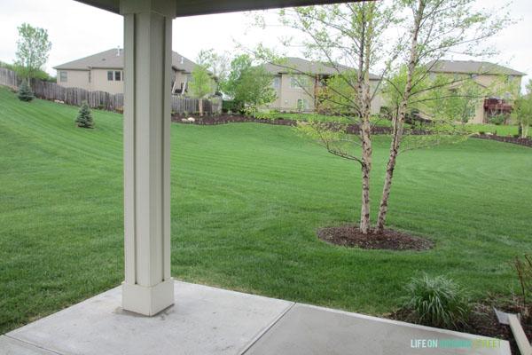 backyard side