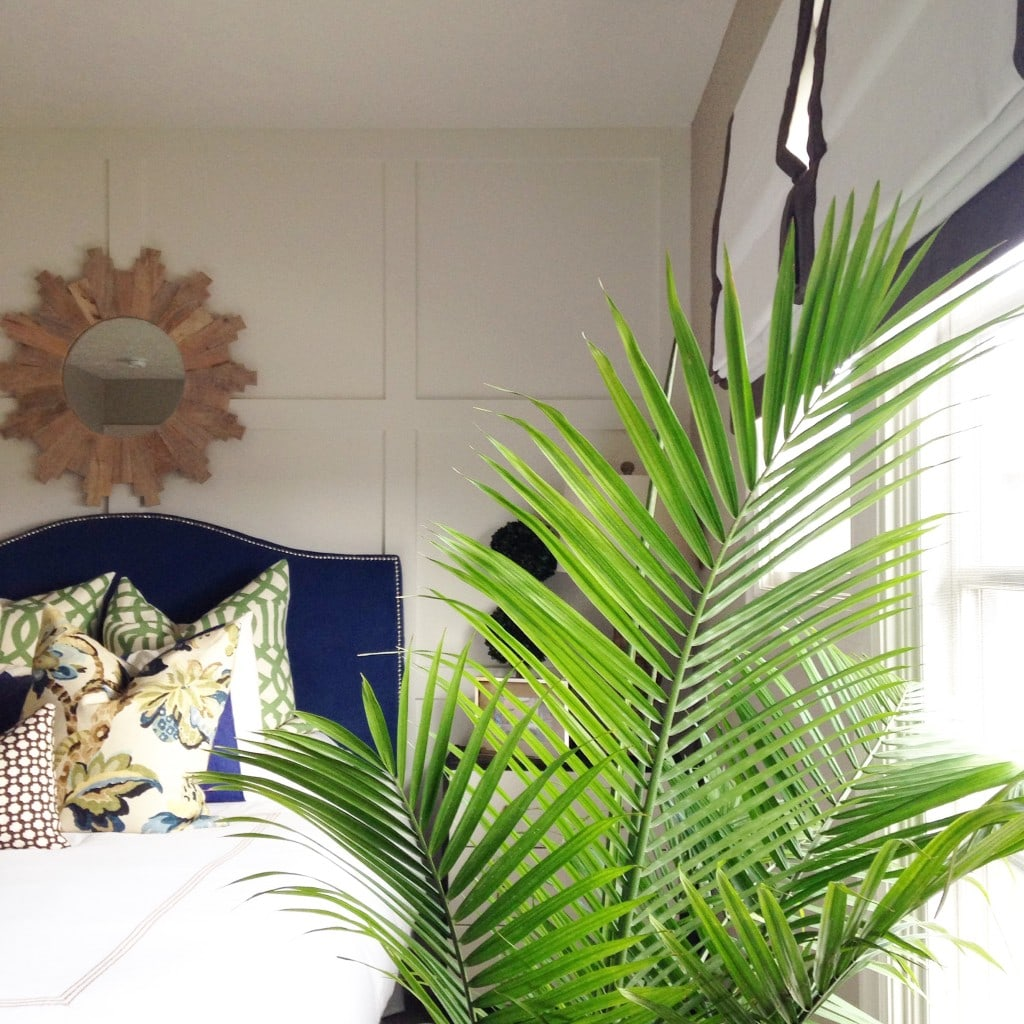Palm fronds in the bedroom in front of the window.