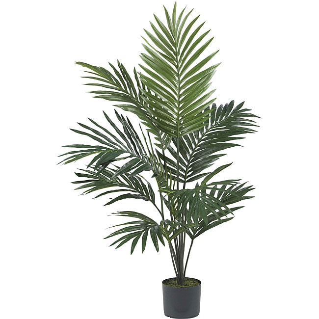 {Kentia Palm Tree - has great reviews for it's life-like appearance}