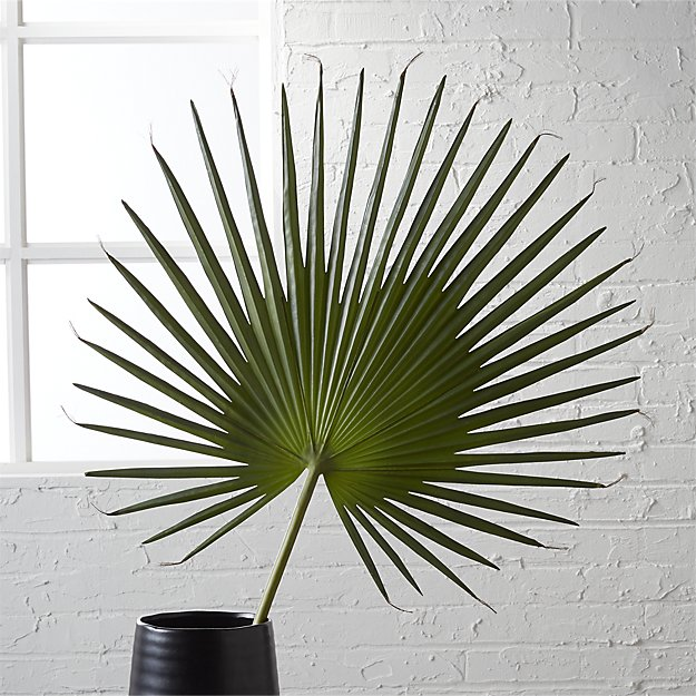 A large palm in a black vase in front of a white washed brick wall.