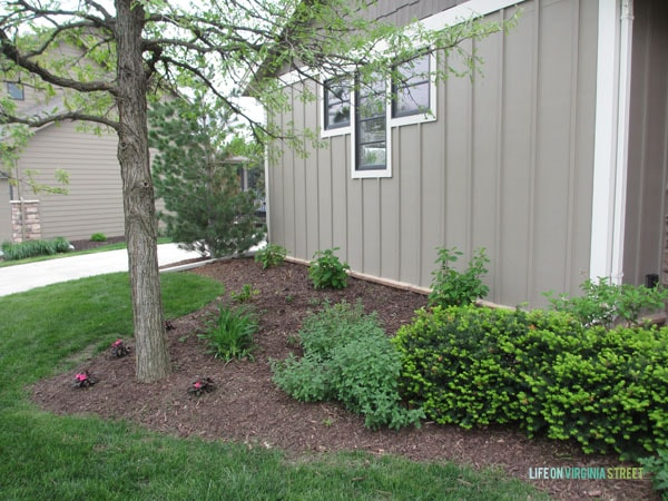 Landscaping and Planter Ideas and Updates - Life On ...