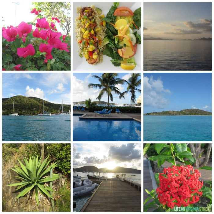 BVI - Collage - Life On Virginia Street