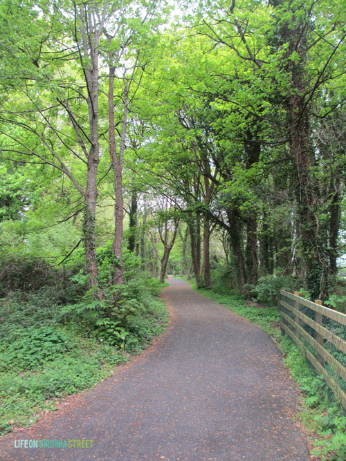 Ireland - Nature Path - Life On Virginia Street