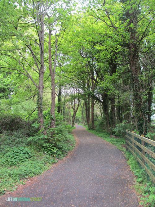 Ireland - Nature Path - Life On Virginia Street