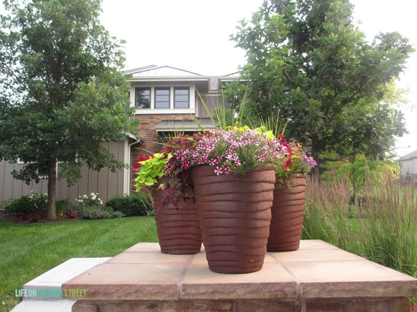 Planters - Front Yard - Life On Virginia Street