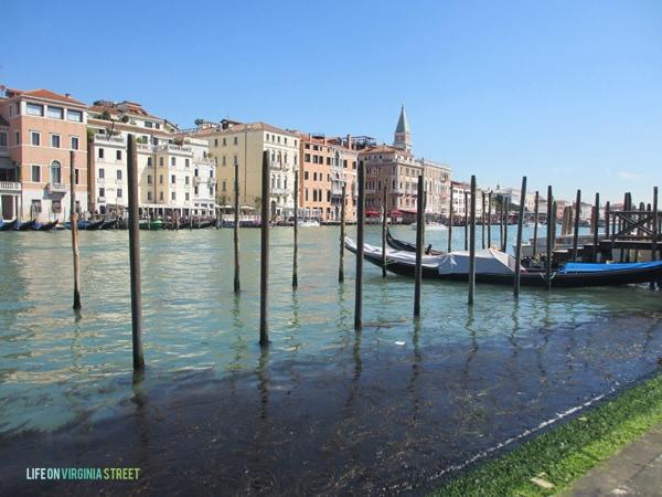Venice - Waterway - Life On Virginia Street