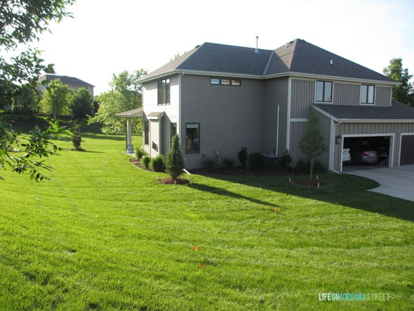 Backyard - Life On Virginia Street