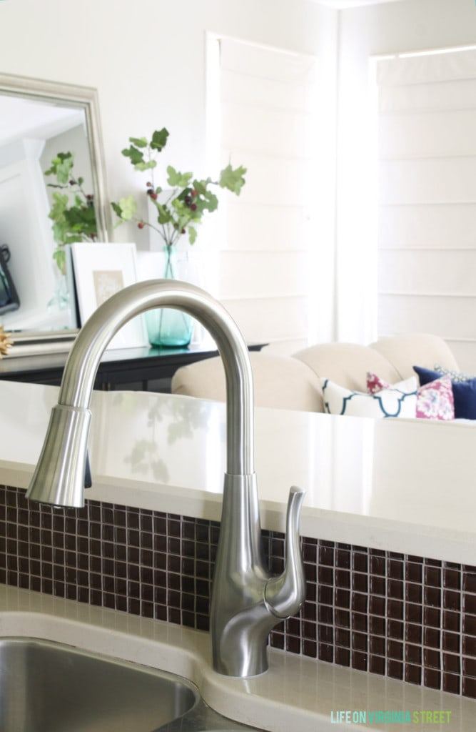 Our New Pfister Clarify Xtract Faucet.