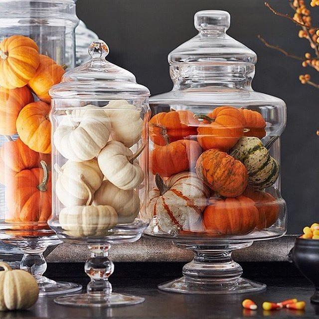 Pumpkin Apothecary