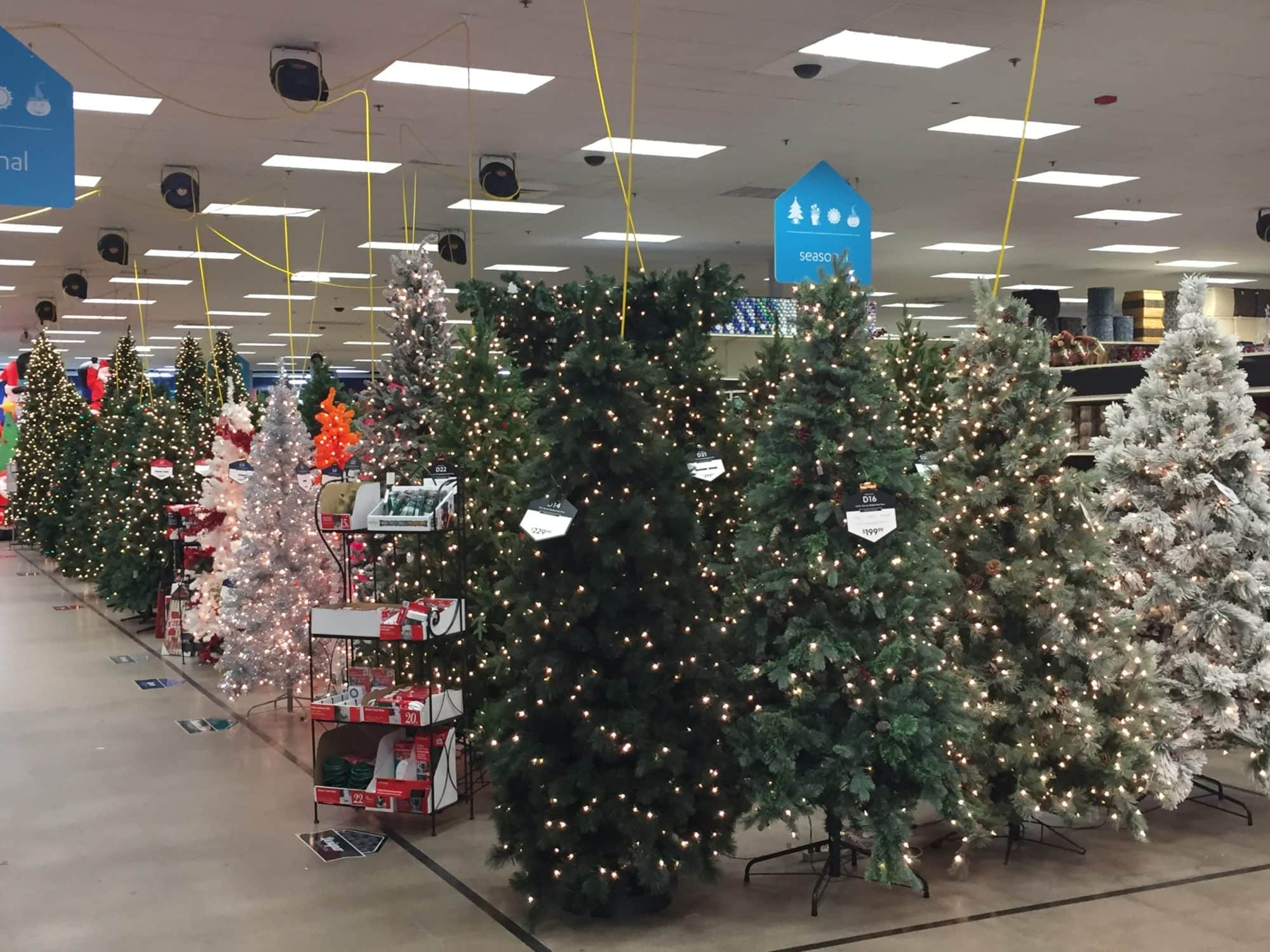 Garden Ridge Christmas Tree Prices