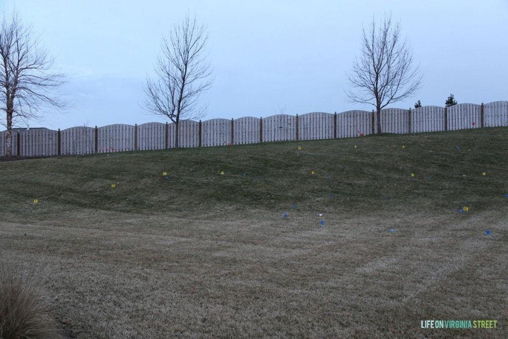 Backyard - Pre Dig