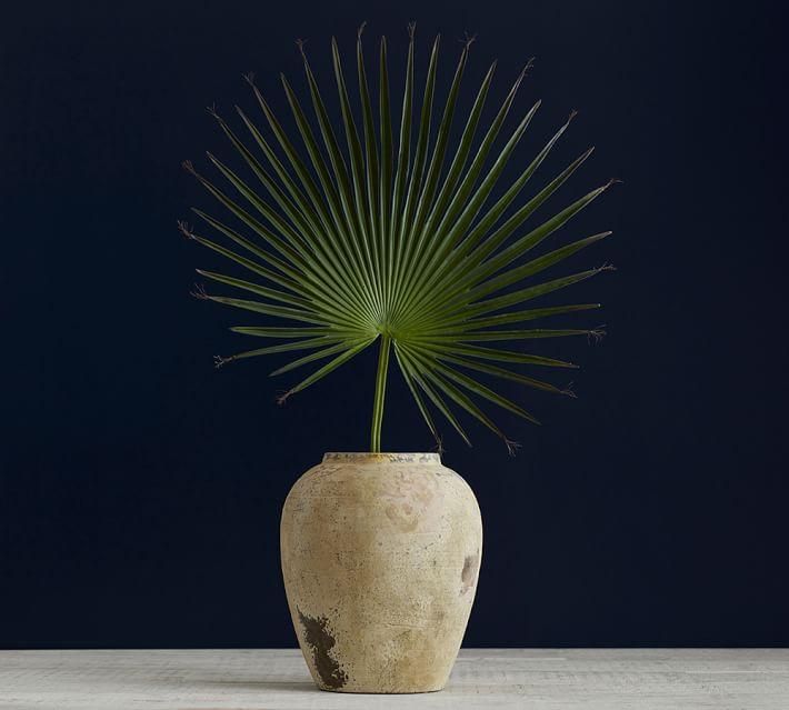 Palmetto Palm Branch