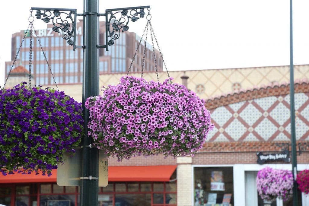 Hanging Flowers Baskets at Country Club Plaza KC via Life On Virginia Street