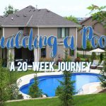 Building a Pool: Everything You Need to Know