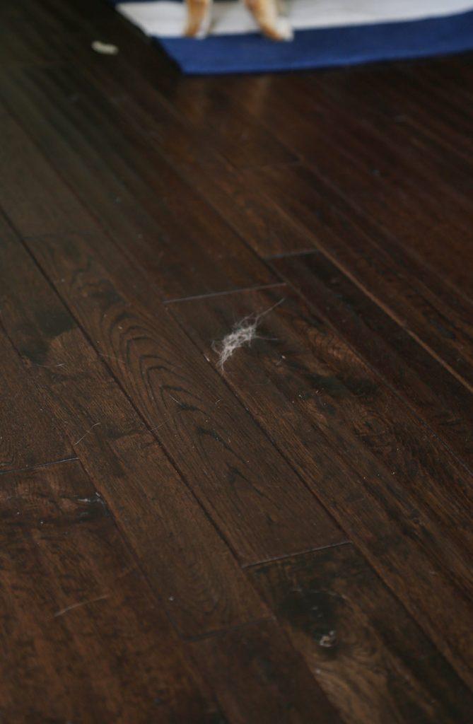 cat-fur-tumbleweed