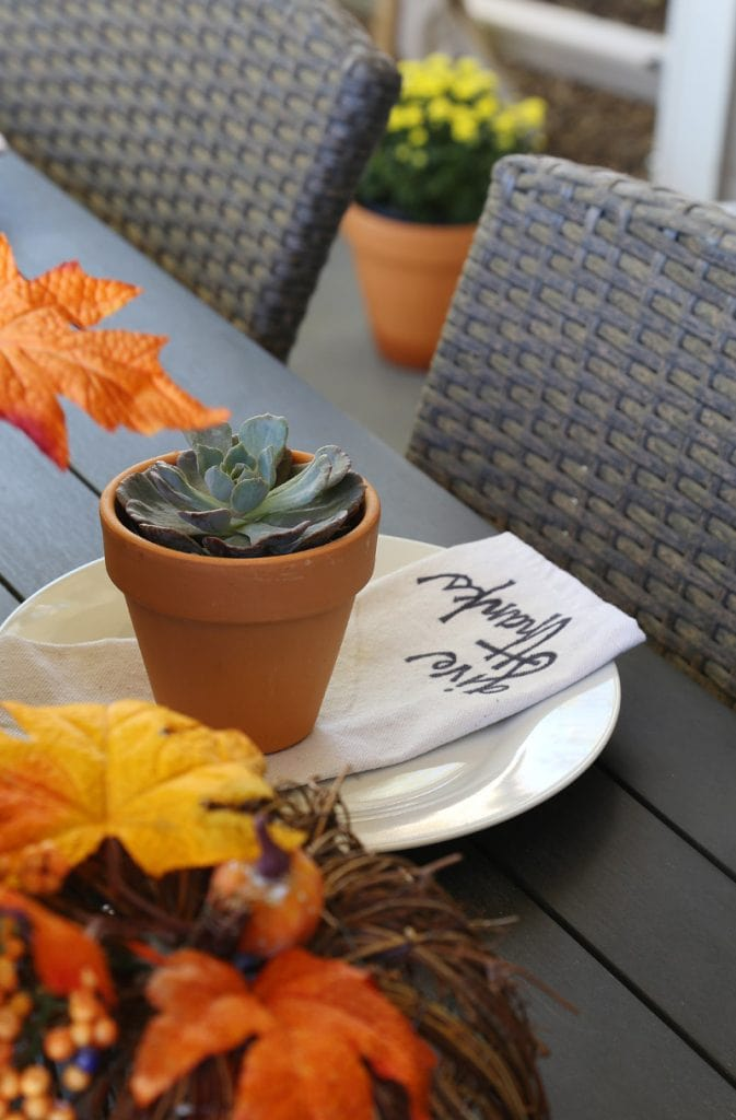 Wooden outdoor table decorated with multicolored fall leaves and a plant on a plate.
