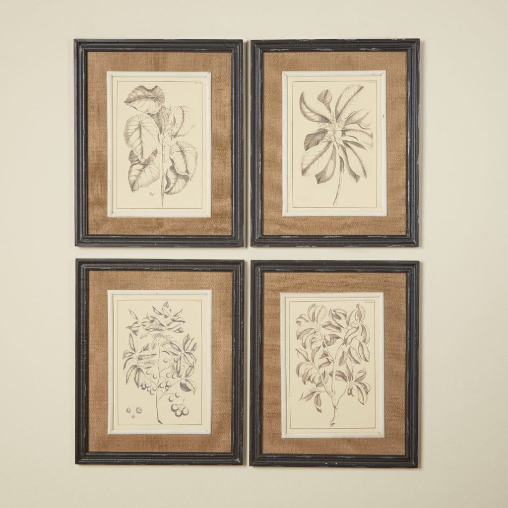 Framed Botanical Wall Art