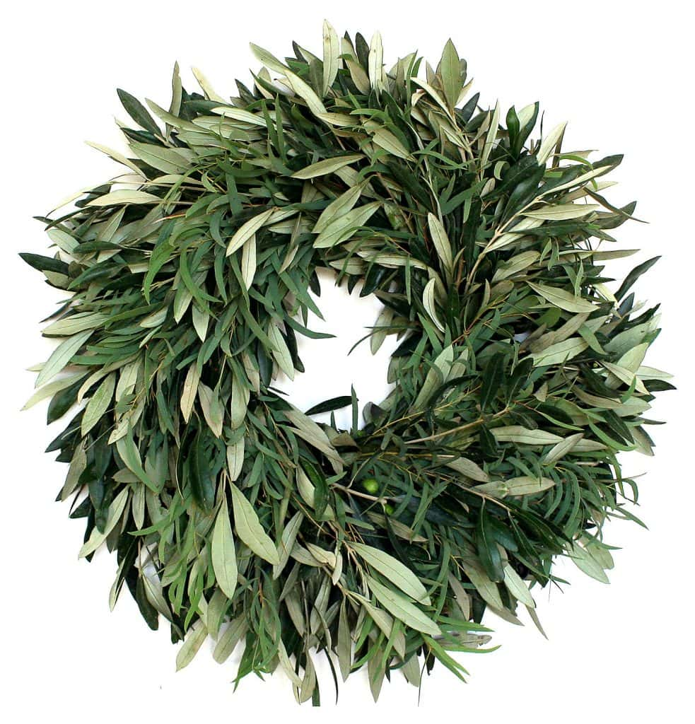 Olive and Eucalyptus Wreath