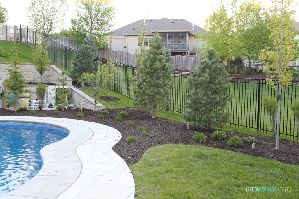 The side of the yard with the pool, a fence and a small garden area.