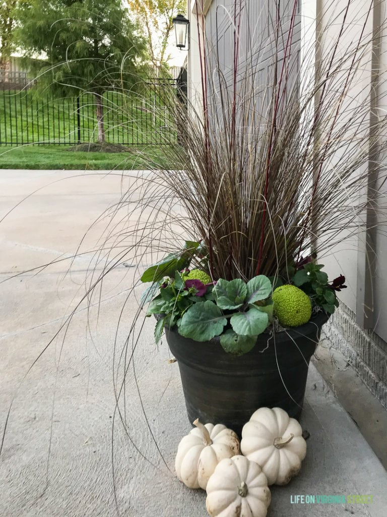 Large black fall planter with white pumpkins beside it.