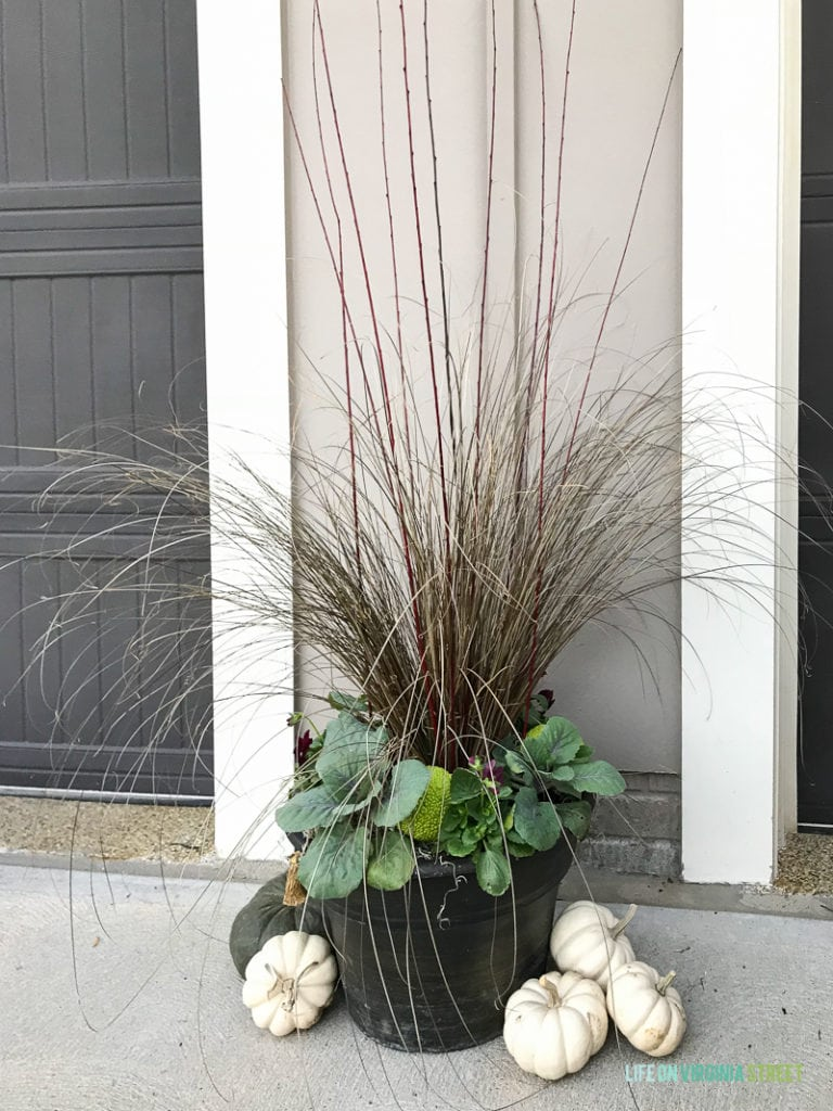 Large planter with white pumpkins beside it.