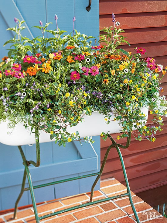 Summer flowers in a large container.