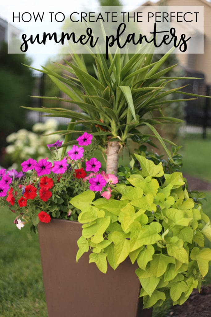 A Step By Tutorial To Share How Create The Perfect Summer Planters