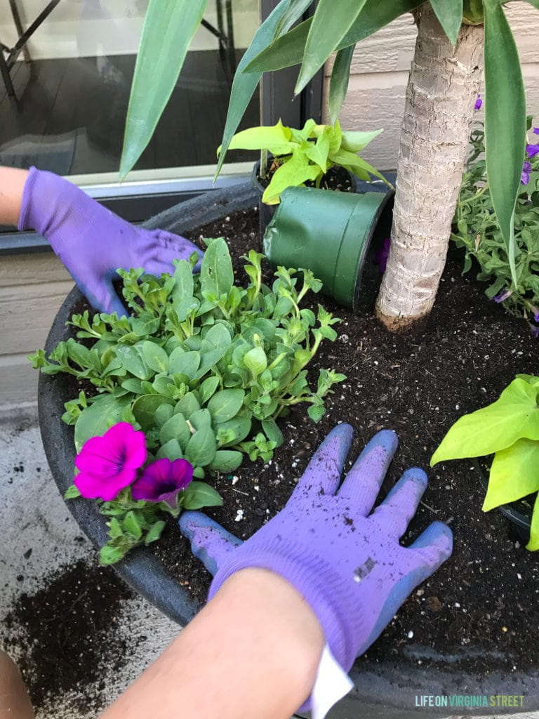 Life On Virginia Street & Tutorial: How to Plant Flowers in a Pot - Life On Virginia ...