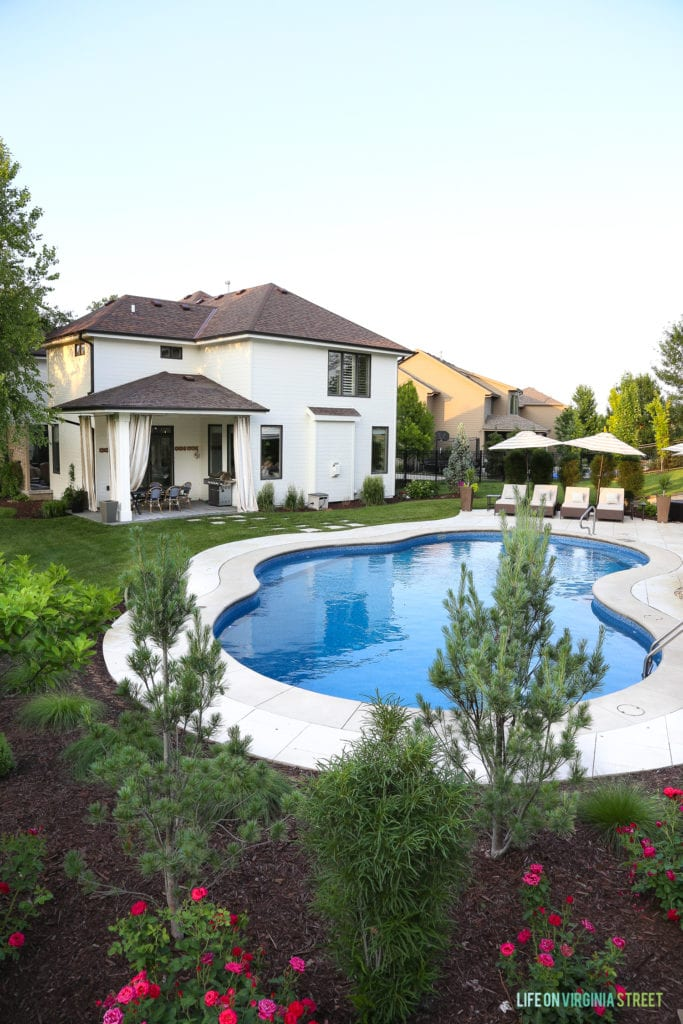 Benjamin Moore White Dove exterior painted house with dark window trim. Includes an oasis shaped pool and travertine pool deck surrounded by fineline buckthorns, knock-out roses, and evergreen trees.