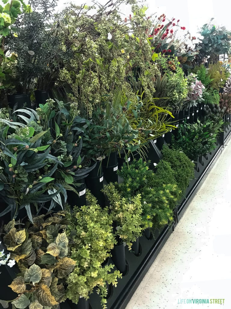 Many plants in a row in a store for sale.