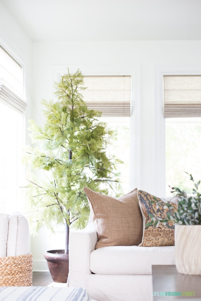 A beautiful faux cypress tree in a living room with a linen sofa and blue and brown decor.