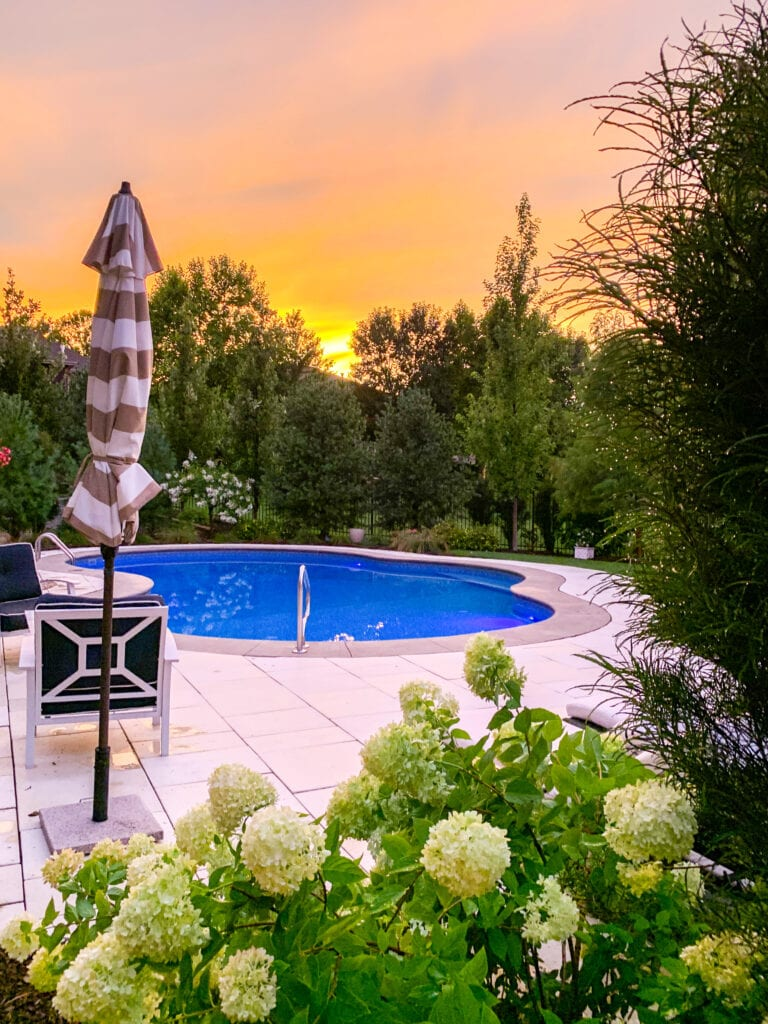 A pool deck at sunset with limelight hydrangeas, striped cabana umbrellas, navy blue and white patio furniture, and an oasis shaped pool surrounded by concrete travertine style pavers.